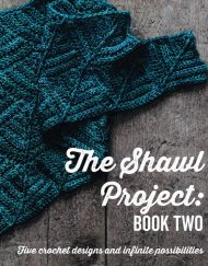 The Shawl Project book 2