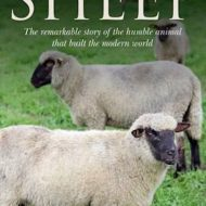 Sheep Alan Butler
