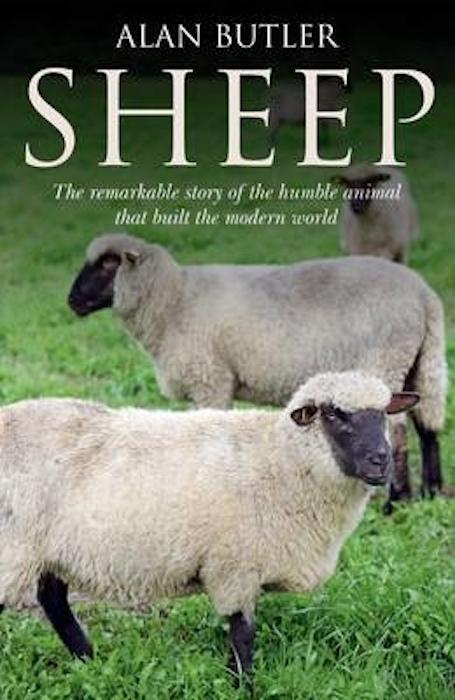 Sheep Alan Butler
